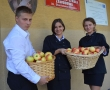 100 jabłkowych inspiracji na 100 lecie Polski